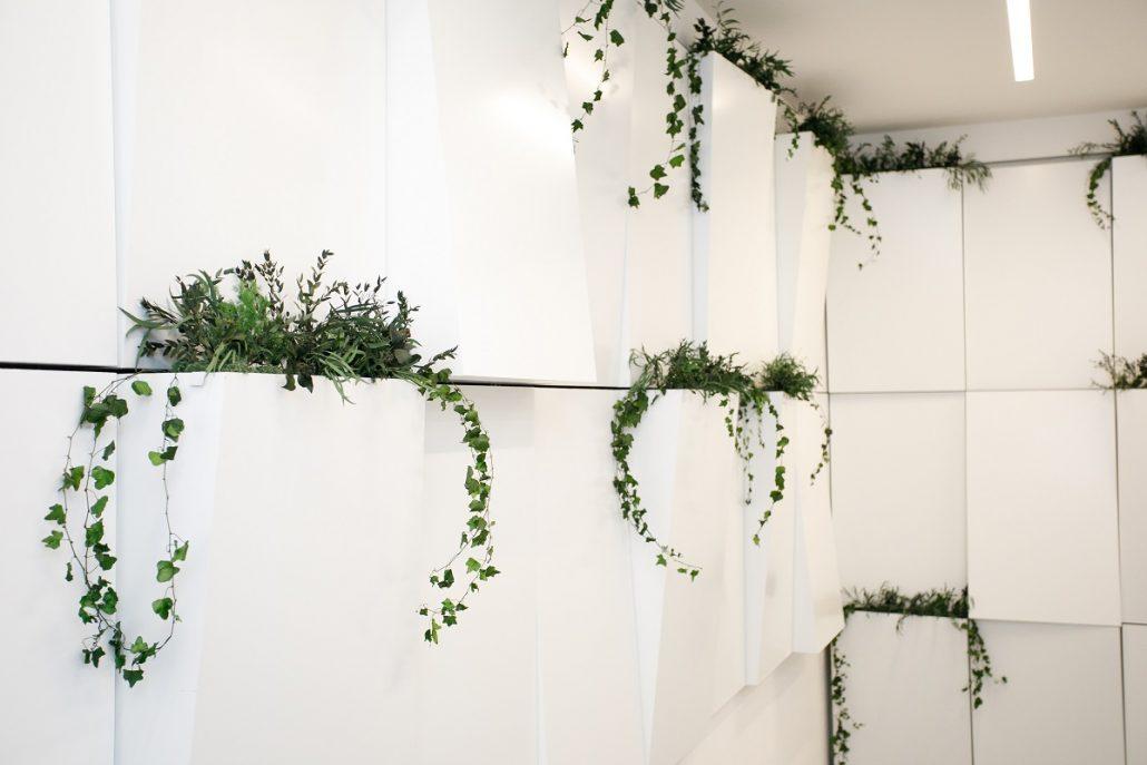 rastliny_naturalsolutions_jtre06